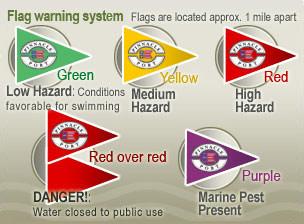 flag_system1