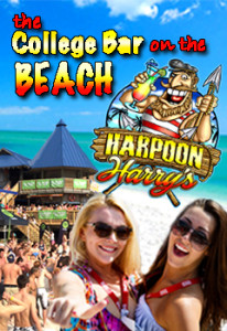 harpoon harrys beach club panama city beach